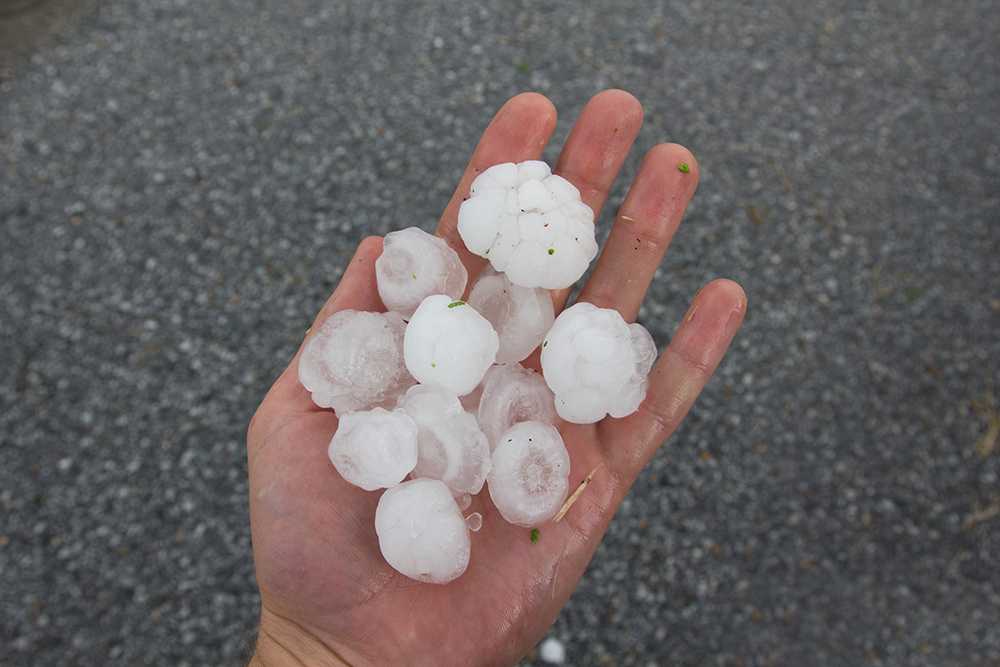 person holding golf ball sized hail in their palm